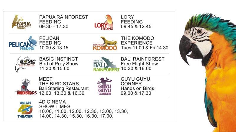 Activities & Attractions Schedule in Bird Park Bali