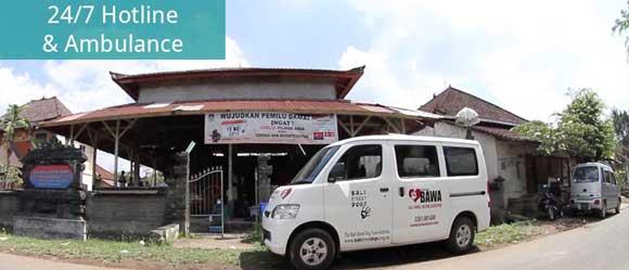 Bali Animal Welfare Association Ambulance
