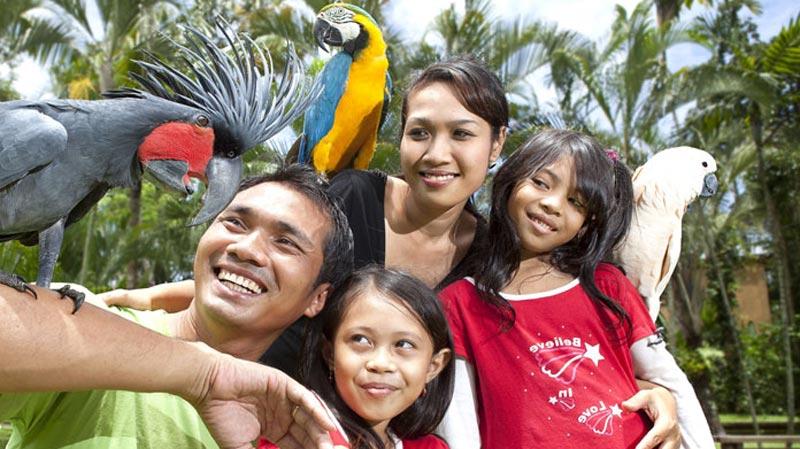 General Information About Bali Bird Park