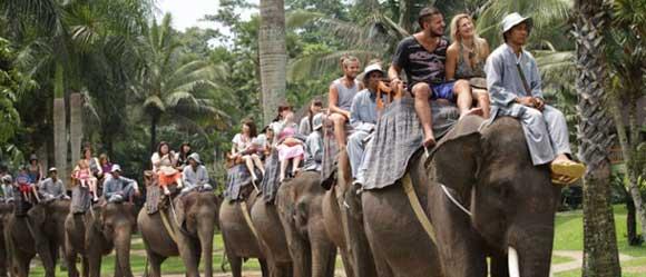 bali elephant rides