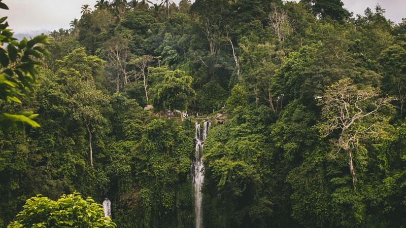 Hidden Sekumpul Waterfalls Bali