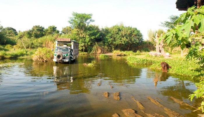 Bali Safari Journey 3