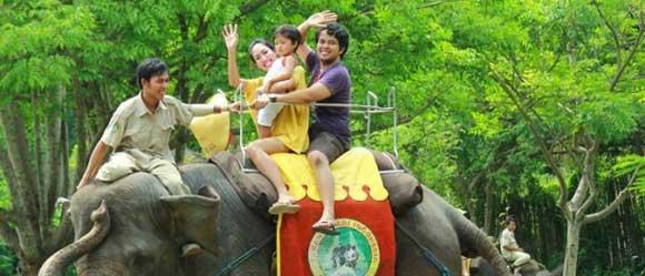 Elephant Back Safari Ride Bali