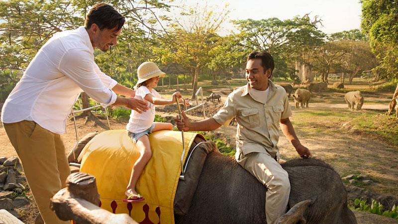 Elephant Ride Bali