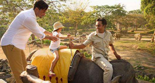Elephant Ride Bali Safari Park