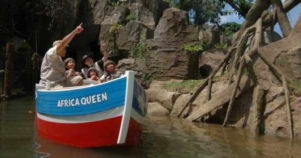 jungle cruise bali