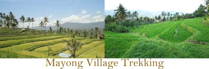 Mayong Village Trekking
