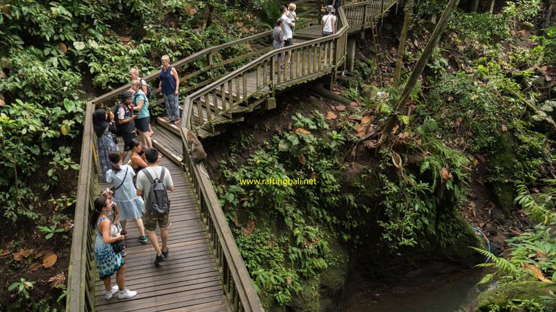 Monkey Forest Ubud Dress Code