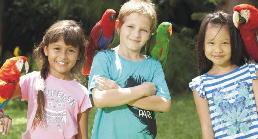 7 Regions Exhibits Bali Bird Park