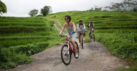 Bali Rice Paddy Cycling Tour