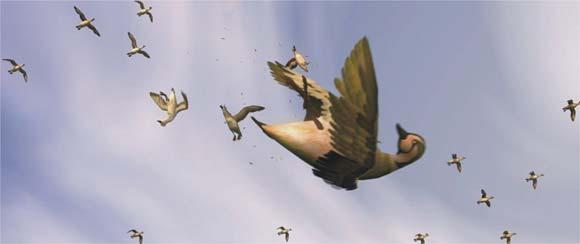 Avian 4D Cinema Show