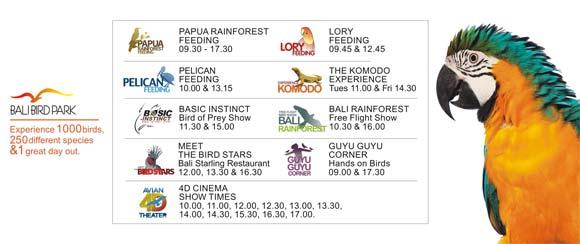 Daily Activities Schedule Bird Park Bali