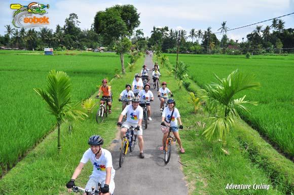 Sobek Cycling Tour Ubud