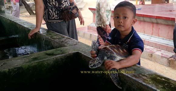 Turtle Island Tour