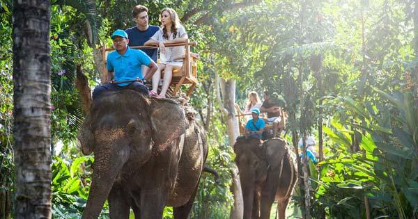 Elephant Back Ride Bali