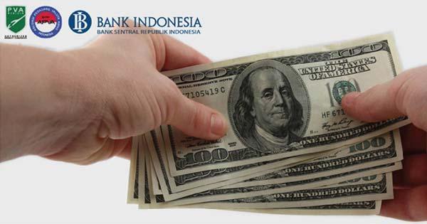 Best Money To Take To Bali