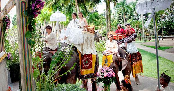 Elephant Ride Safari Wedding In Bali