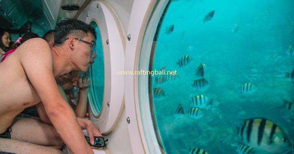 Voyage of Fantasy Odyssey Submarine Diving Program