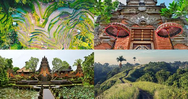 8 Free Things To Do In Ubud Bali