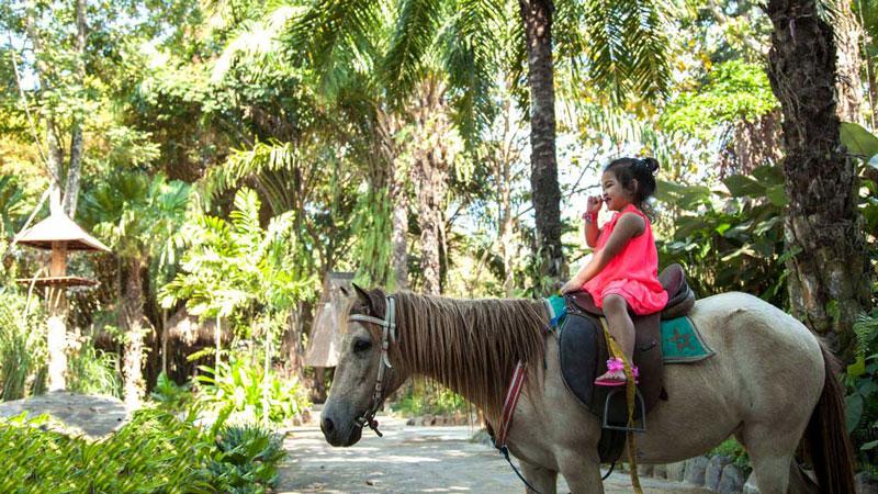 Riding A Pony In Bali
