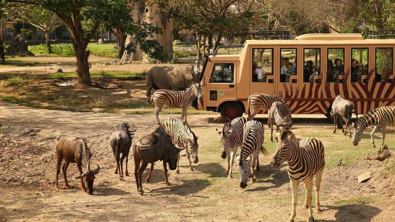Safari Journey Bali Safari Marine Park Gianyar