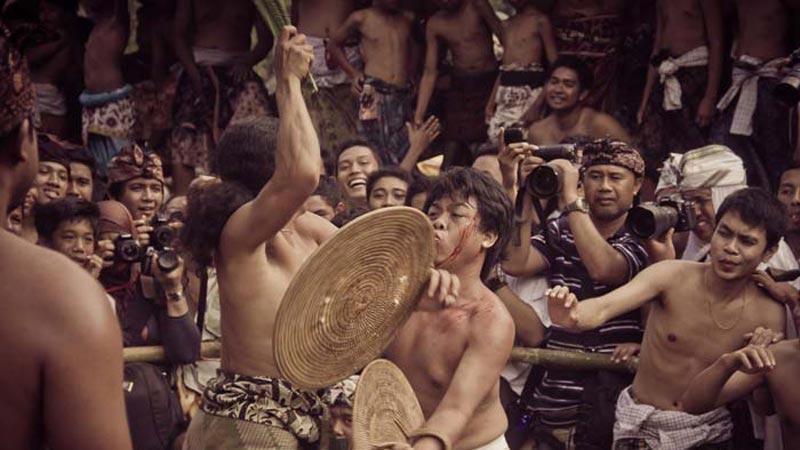 Pandanus War At Ancient Village