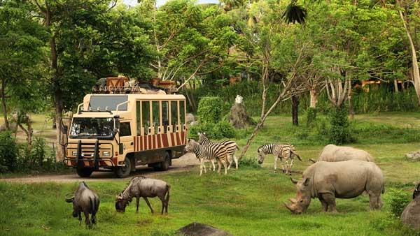 Bali Safari And Marine Park Entrance Fee