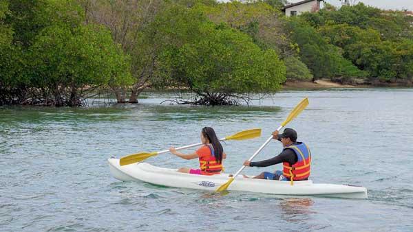 Kayaking Menjangan Island