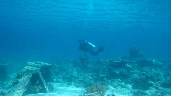 Scuba Diving Menjangan Island